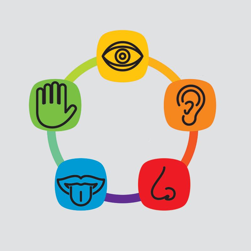 Marketing sensorial na hotelaria – os cinco sentidos e a experiência do hóspede